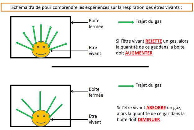 schémas exp gaz